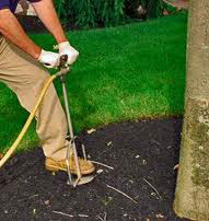landscaper using a tool to aerate the soil